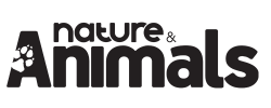 Nature & Animals