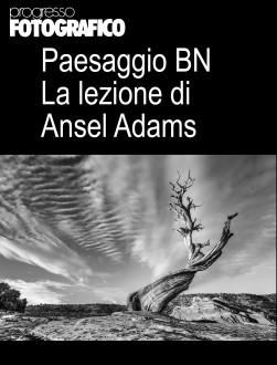 Il paesaggio bianconero: la lezione di Ansel Adams