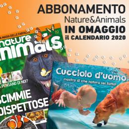 Abbonamento a Nature & Animals con il calendario 2020
