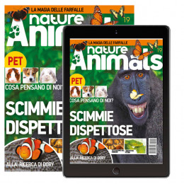 Abbonamento a Nature & Animals con il calendario 2020