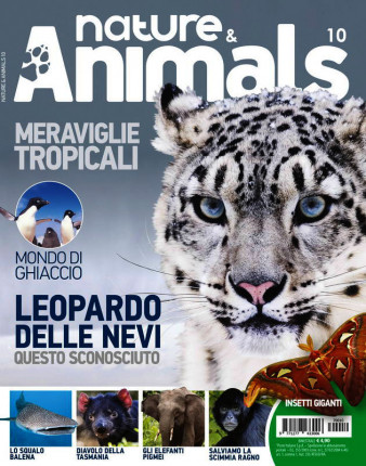 Nature & Animals # 10