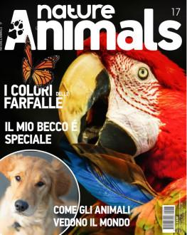 Nature & Animals # 17