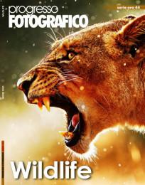 Progresso Fotografico 44: Wildlife