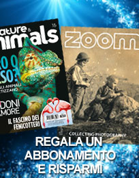 Regala un abbonamento: Nature & Animals e Zoom