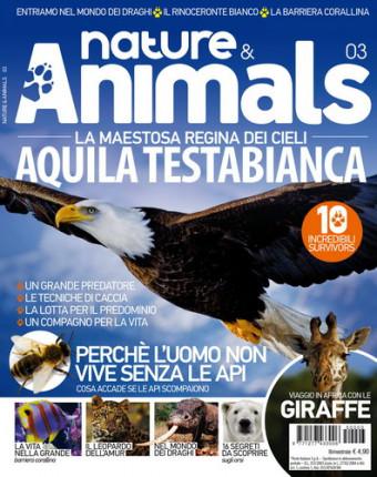 Nature & Animals # 3