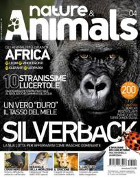 Nature & Animals # 4